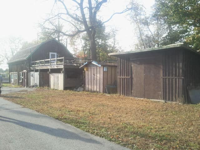 brown cabin, green trees in the background, green and brown grass in the front, grey sidewalk