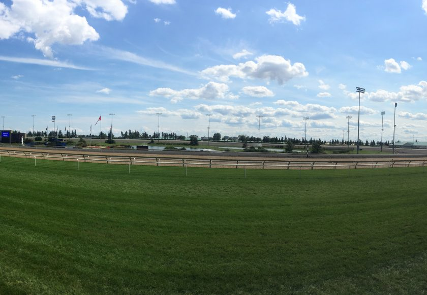 Woodbine Racetrack, wide green open field with light blue sky filled with clouds